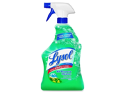 Lysol All-Purpose Cleaner 1 EA