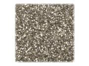 Chenille Kraft Company CKC8916 Glitter- in Shaker Jar- 1 lb.- Silver