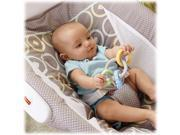 Fisher-Price Rock N Play Sleeper (Luminosity)