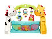 Fisher-Price Newborn To Toddler Playgym