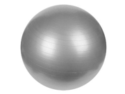 Sunny Fitness Anti-Burst Gym Ball, 65 CM