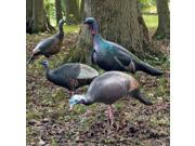 ULTIMATE TURKEY DECOYS, 4PK
