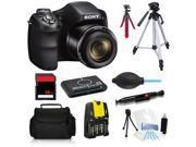 Sony Cyber-Shot DSC-H200 20.1 MP Digital Camera Professional All Inclusive Kit