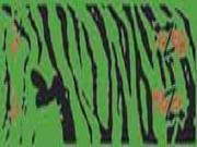 Bohning Blazer Carbon Wrap Green Tiger