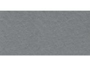 "Bazzill Prismatic Cardstock 12""X12""-Gray"
