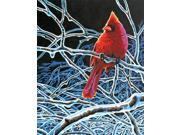 """Paint By Number Kit 11""""X14""""-Ice Cardinal"""