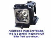 EPSON ELPLP49, V13H010L49 diamond lamp