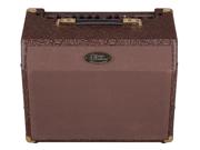 Luna Acoustic Ambience Amp AA25 - 25watt Guitar Amp