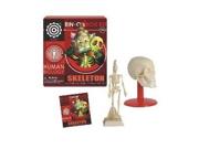 Ein-O's Human Biology Skeleton Box Kit