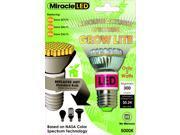 LED Absolute Daylight Grow Bulb - 60 Watt Equivalent, Uses 2 Watts