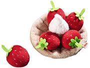 Haba Biofino Strawberry Tartlet
