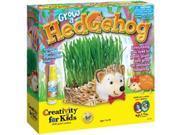 Grow A Hedgehog Kit-