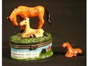Horse Pony Colt Mare Pasture Lovers Trinket Box phb New