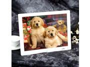 15'' HD TFT-LCD 1024*768 Digital Photo Frame Alarm Clock MP3 MP4 Movie Player with Remote Desktop