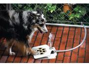 GPCT-385 Outdoor Doggie Water Fountain - Pet Activated, Hose Splitter Included