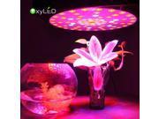 OxyLED 216 Watt Indoor Plant LED Grow Light