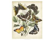 Non-Embellished Butterfly Haven II Poster Print by Vision studio (26 x 32)