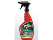 Rejuvenate Auto Carpet and Upholstery Spot and Stain Remover- 22 Fl Oz
