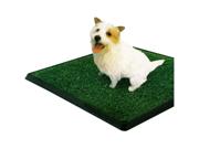 "PetZoom Pet Park Indoor Pet Potty, 25.5"" x 20"" x 2"""