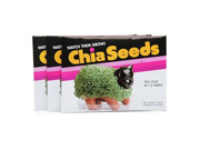 Chia Seeds (Pack Of 3)