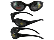 Birdz Raven Motorcycle Glasses with Smoke Shatterproof Anti-Fog Polycarbonate Lenses and Wind Blocking Foam
