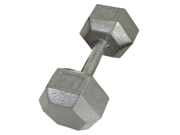 USA Sports Individual 75lb Cast Iron Hex Dumbbell by Troy Barbell