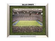 Dallas Cowboys Game Used Turf Matting Framed 20x24 Collage w/ Engraved Namplates
