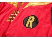 DC Comics Robin Vintage Superhero Bath Robe