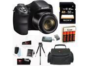SONY H300 Cyber-shot DSCH300B Digital Camera in Black + 32GB Accessory Kit