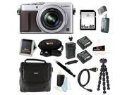 Panasonic LUMIX LX100 16.8 MP with Integrated Leica DC Lens (Silver) Bundle with 64GB SD Card + Gadget Bag + Two Replacement Batteries and Charger for Panasonic DMW-BLG10 and Camera Accessories