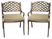 Arm Chair in Bronze Finish w Cushion - Set of 2