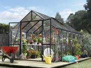 Clear View Greenhouse in Black