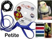 Aviator Harness and Leash - Petite - Blue