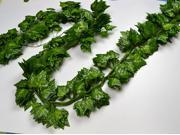 Pack of 24--8 feet Artificial greenery ivy Garlands for wedding and party decorations,