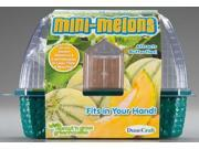 SG-0107 Mini-Melons Kit DUNX0107 DUNECRAFT INC.