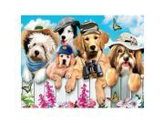 Ceaco 300 Piece Oversized Puzzle - 2 in 1 multipack