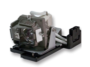 DLT BL-FP180C replacement projector lamp with housing for OPTOMA TX735 / ES520 / ES530 / EX530 / TS725 / DS611 / DX612