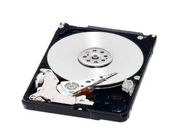 Western Digital 160 GB WD Black SATA III 7200 RPM 16 MB Cache Bulk/OEM Notebook Hard Drive WD1600BEKX