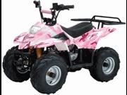 TaoTao 110cc B3 Sport Kids ATV