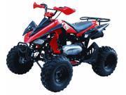 Tao Tao 150cc SportMax Adult Quad