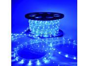 50' 100' LED Rope Light 110V Home Party Christmas Decorative In/Outdoor