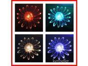 Solar Powered Garden Yard Stake Color Change Light LED Gift Bird Frog Bee Flower