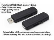 TeKit NTRC100019 High Quality Voice Activated 4GB USB Flash Drive