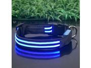 Glovion LED Pet Collar 40-50cm Blue Light Double Fibers Flashing Collar