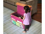 Kids Large Collapsible Toy Chest Pink By: Great Useful Stuff [Toy]