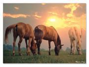 Sunrise Horses 300 pcs. - Jigsaw Puzzle by Melissa & Doug (8994)