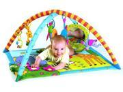 Tiny Love Gymini Super Deluxe Activity Gym with Lights and Music