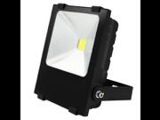 100W High Power Outdoor LED Flood Light - AC85-265V Daylight Waterproof COB LED Floodlight Security Light - Die-casting Aluminum Light Housing - 120 Degree Beam Angle