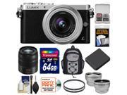 Panasonic Lumix DMC-GM1 Micro Four Thirds Digital Camera & 12-32mm Lens with 45-150mm Lens + 64GB Card + Battery + Backpack + Filters + Tele/Wide Lens Kit