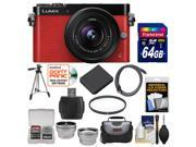 Panasonic Lumix DMC-GM5 Micro Four Thirds Wi-Fi Digital Camera & 12-32mm Lens (Red) with 64GB Card + Case + Battery + Tripod + Filter + Tele/Wide Lens Kit